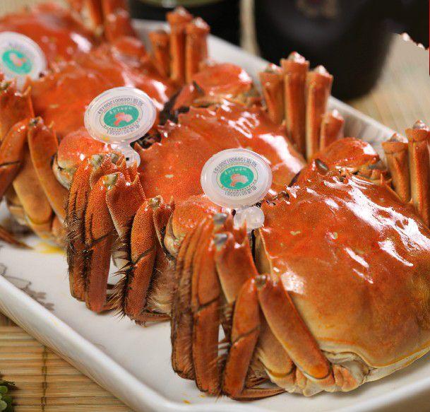 两头尖螃蟹
