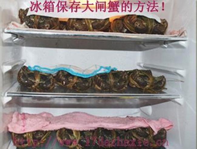 大闸蟹冰箱保存