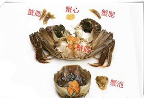 大闸蟹不能吃的部位-王氏水产