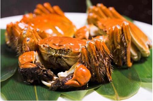 阳澄湖大闸蟹什么时候最好吃