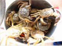 王氏水产花雕醉蟹处理螃蟹