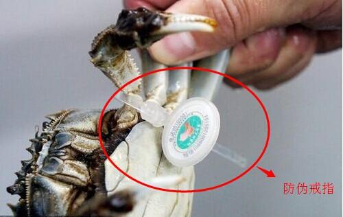 大闸蟹防伪戒指