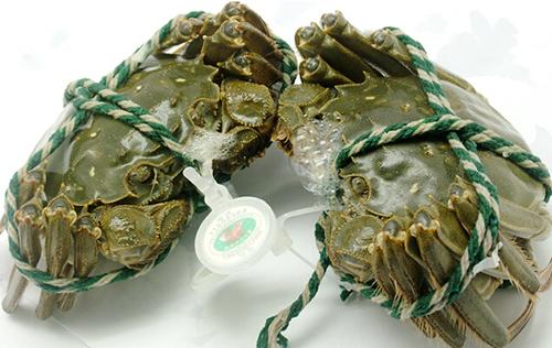 大闸蟹家庭保存方法