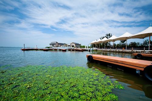 阳澄湖哪里吃大闸蟹