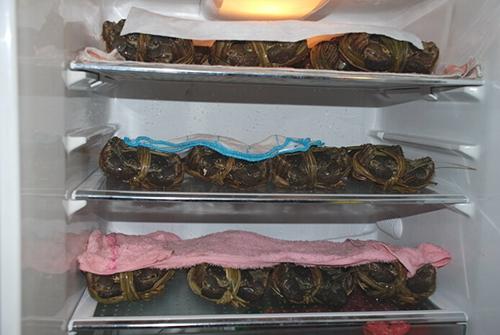 冰箱保存阳澄湖大闸蟹