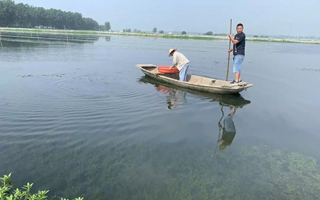 王氏养殖示范基地