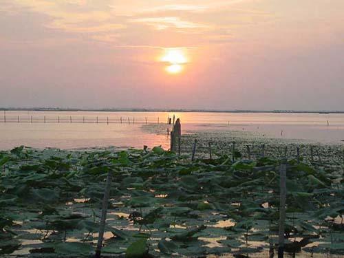 阳澄湖大闸蟹养殖的环境