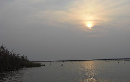 夏季高温阳澄湖大闸蟹管理方法
