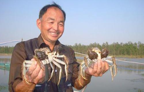 王氏大闸蟹