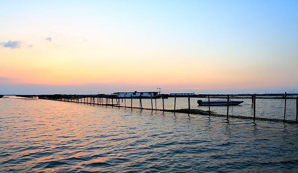 阳澄湖景色